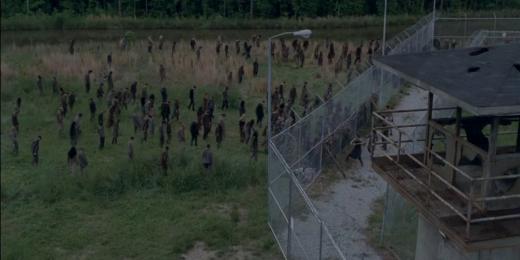 walkers-in-the-field-the-walking-dead-season-4