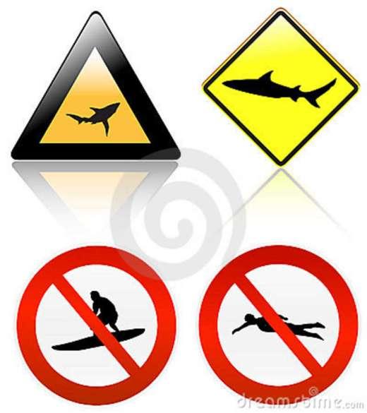 no-surf-swim-shark-danger-20551435
