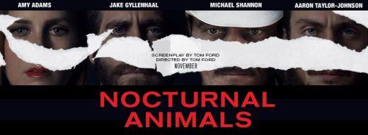 nocturnal-animals-3